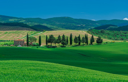 val d'orcia: image of typical tuscan landscape Stock Photo