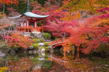 momiji: Daigoji temple in maple trees, momiji season, Kyoto, Japan