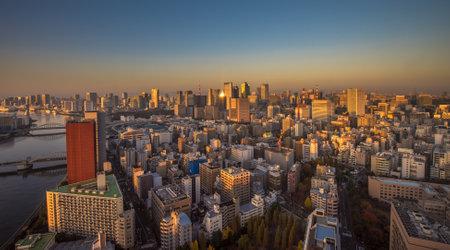 tokyo sky tree: Tokyo aerial panoramic view Editorial