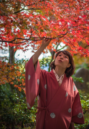 momiji: KYOTO, JAPAN - November, 18, 2014: Young japanese girl admiring maple trees, momiji season in Kyoto