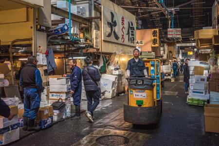 motorizado: TOKIO, JAP�N - Noviembre 22, 2014: Un hombre Taretto conducci�n, motorizado carrito de carga, en, el mayor mercado de pescado y mariscos en el mundo.