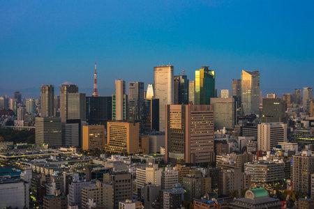 urbanistic: Tokyo aerial panoramic view at sunrise