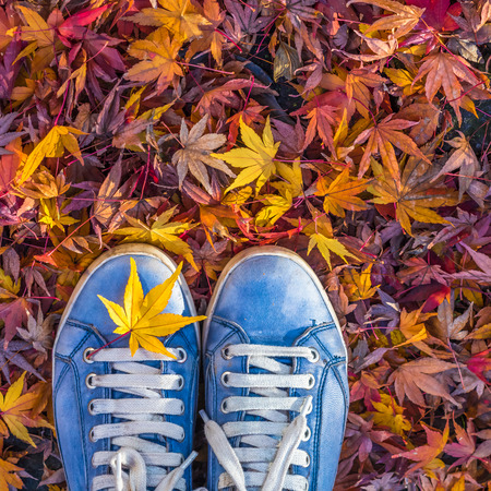 Autumn season in hipster style shoes