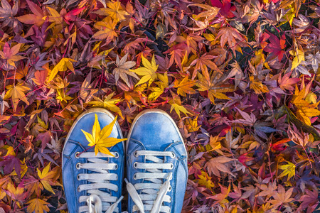 leaf: Autumn season in hipster style shoes