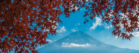 fuji: Mount Fuji and autumn maple leaves, Kawaguchiko lake, Japan