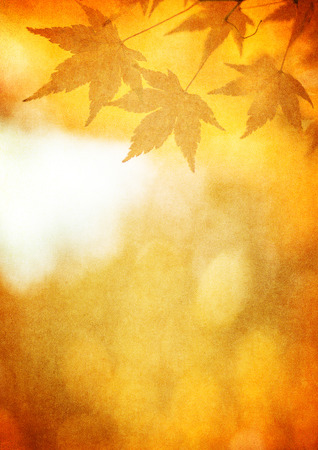 autumn background: grunge background with autumn leaves