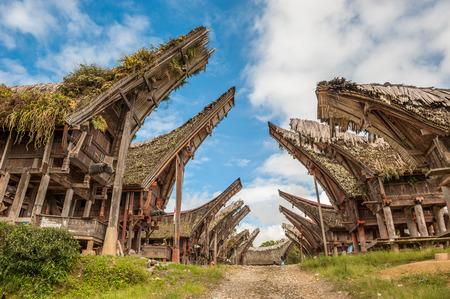 Tongkonan maisons, des bâtiments traditionnels Toraja, Tana Toraja, Sulawesi, Indonésie