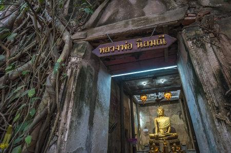 temple thailand: Wat Bang Kung, The Banyan tree temple, Amphawa, Thailand