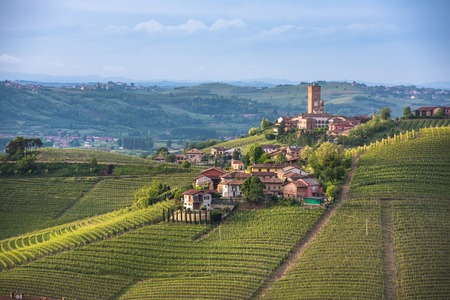 italy landscape: Panorama of Piedmont vineyards and Barbaresco town