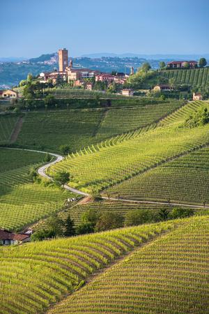 Panorama di vigneti del Piemonte e la città Barbaresco