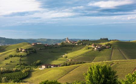 regions: Panorama of Piedmont vineyards and Barbaresco town