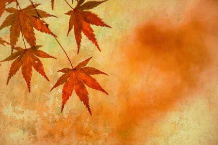 canvas: grunge background with autumn leaves