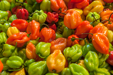 central market: Fresh paprika at the Central Market Hall in Budapest, Hungary