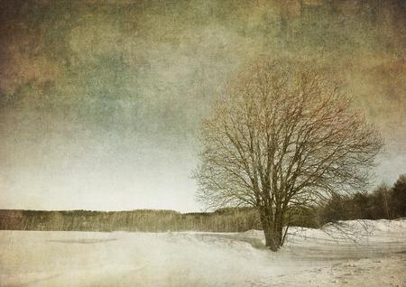 grunge image: grunge image of a tree over vintage background