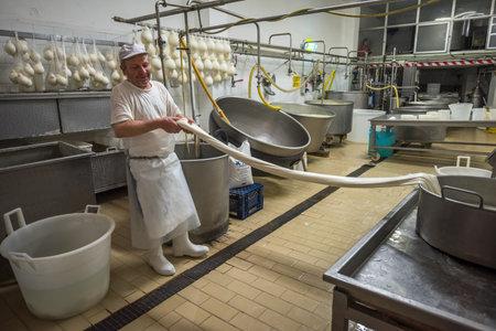 culinary tourism: GRAVINA IN PUGLIA, ITALY - June, 13, 2015: Caciocavallo cheese making in Puglia, Italy Editorial