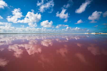 Salz rosa Lagune in Las Coloradas, Yucatan, Mexiko Standard-Bild - 71152447