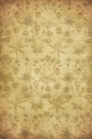 highly detailed image of grunge vintage wallpaper Stock Photo