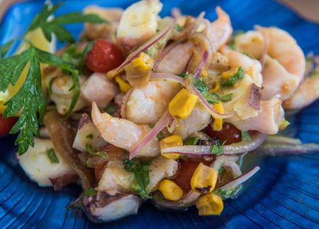 Delicious ceviche mixto mexican style, mixed seafood ceviche Zdjęcie Seryjne - 84421654