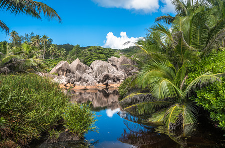 Lake in the jungle, La Digue island, Seychelles Stock Photo