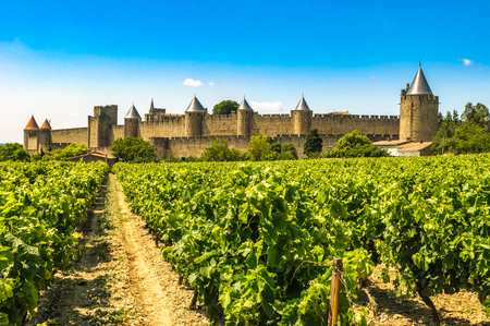 Medieval town of Carcassonne and vineyards, France