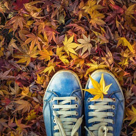 Temporada de otoño en zapatos estilo hipster Foto de archivo
