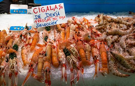 Fresh prawns and langoustines at a fish market