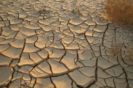decadence: Dry soil - no water - desert land - ecology problems Stock Photo