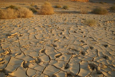 dilapidation: Dry soil - no water - desert land - ecology problems Stock Photo