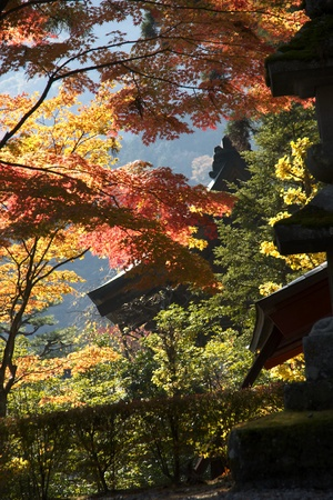 mausoleums of the Tokugawa Shoguns in nikko at autumn with red leaves photo