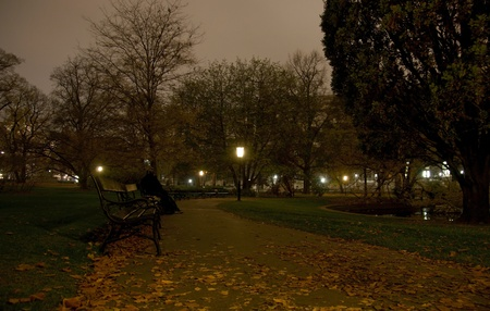 Vienna park at night autumn travel europe tourism photo