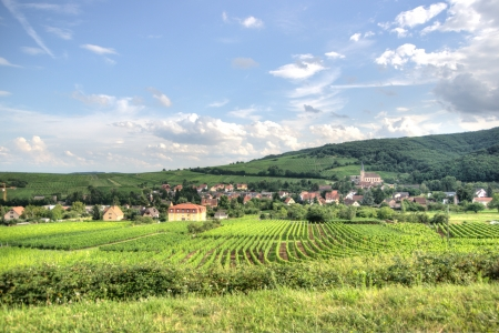 Hiking in Alsace with vinewyard views in France vacation Stock Photo