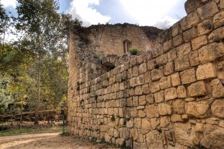 crusade: Crusader castle in Israel near jerusalem in fall