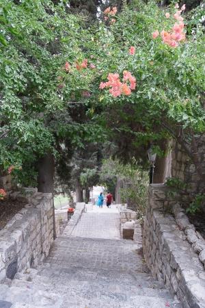 pioneers: Old park in nothern Israel town of pioneers Stock Photo