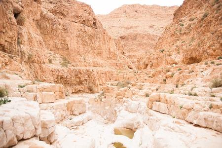 judean: Hiking in a Judean desert of Israel
