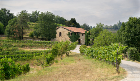agriturismo: Hiking in italy agriturismo rural contry side summer Stock Photo