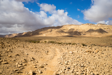 View of ramon crater desert of southern israel during hiking Stock Photo