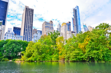 the city park: View of Central Park in New York City in autumn