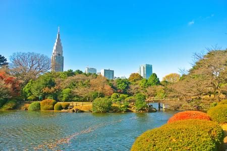 View of the park in autumn in Tokyo, Japan. Banco de Imagens