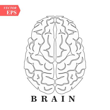Brain, mind or intelligence line art icon for apps and websites eps 10 Illustration