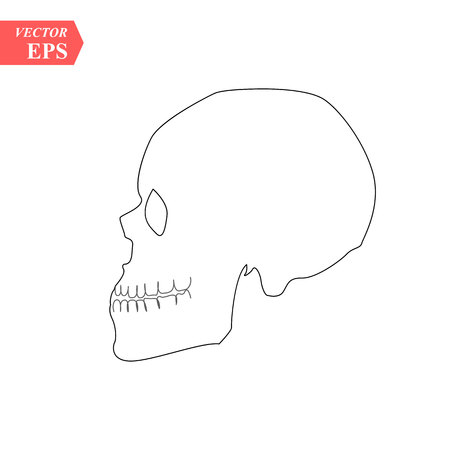 Vector human skull side view silhouette. eps10