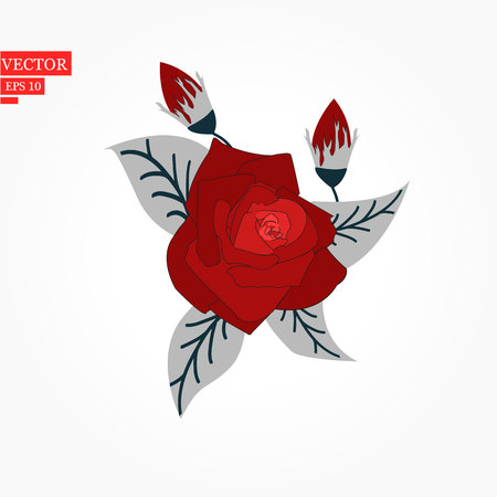 Flower rose, red buds and green leaves. Isolated on white background. Vector illustration. eps10