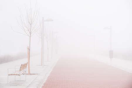 In a foggy day a lonely person stands searching for nothing