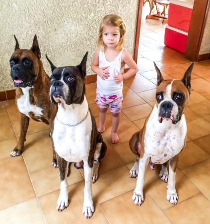 彼女の 3 つのボクサー犬と遊ぶかわいい子供