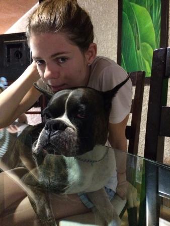 perro boxer: niña con el perro Foto de archivo