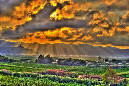 The Shining on the field of Gandia, Valencia Spain Stock Photo