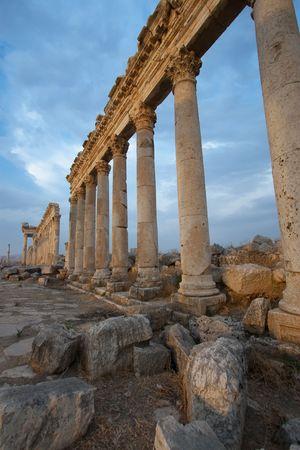 middle joint: Columns in Aphamia, Siria Stock Photo