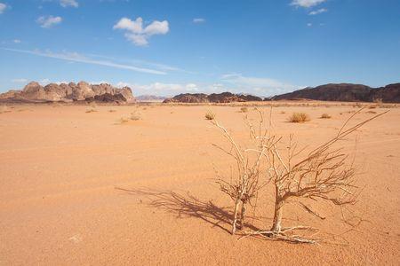 wadi: Desert of Wadi Rum, Jordan