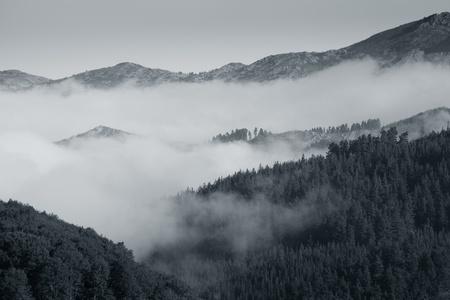 alava: Niebla en el parque natural de Gorbea, �lava, Espa�a Foto de archivo