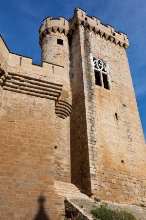 Olite castle, Navarra, Spain Stock Photo - 14200801