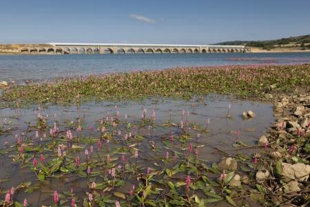 Ebro reservoir, Burgos, Castilla y Leon, Spain Stock Photo - 14984412